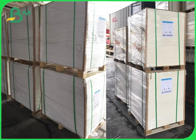 FDA PE Coated Paper 300gr 350gr Sheet for Box of Food 70 x 100cm